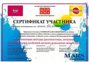 Сертификат Участника Центр Ветеринарной Медицины