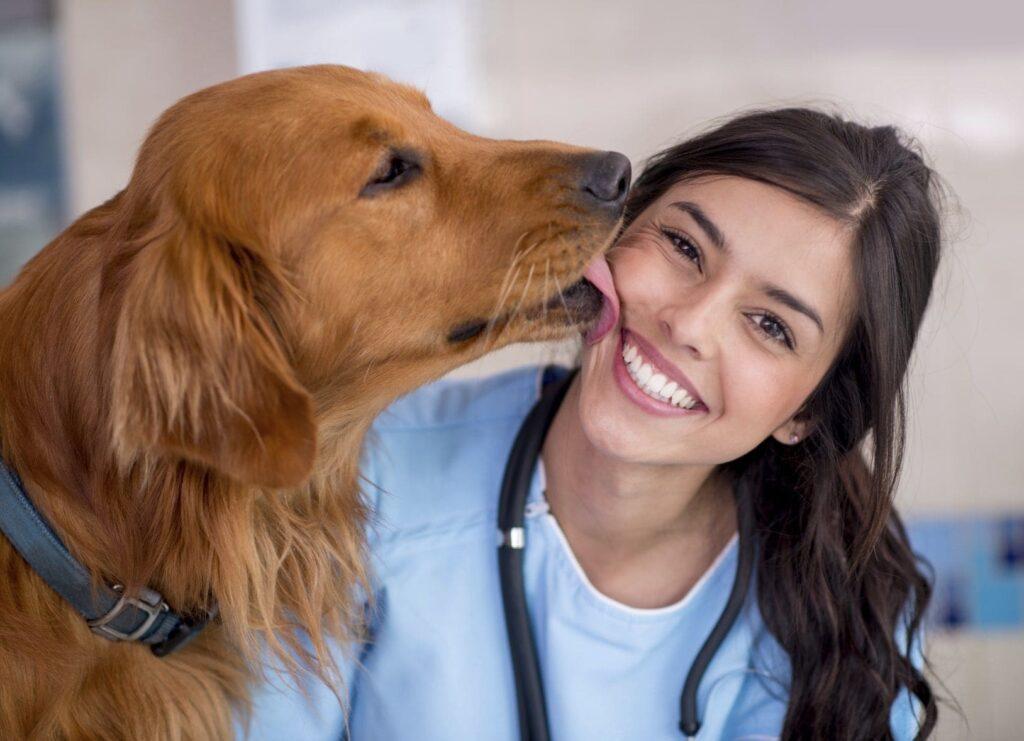 День ветеринарного работника