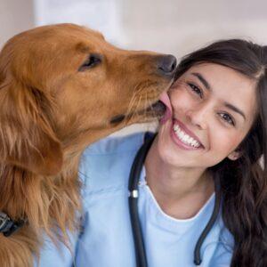 С днём ветеринарного работника!