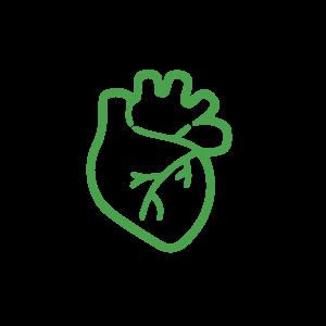 Сердечный профиль