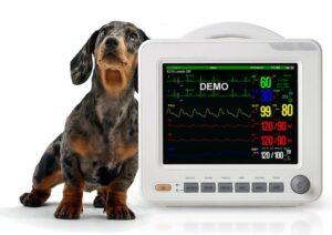 Как выбрать ветеринарный монитор пациента?